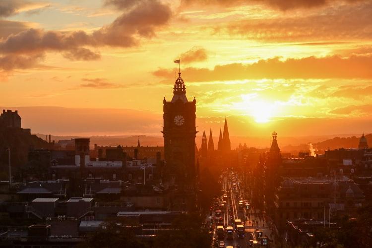 My Experience Finding Pest Control In Edinburgh
